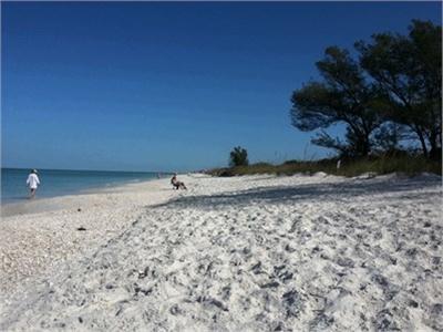 Why I Love Southwest Florida